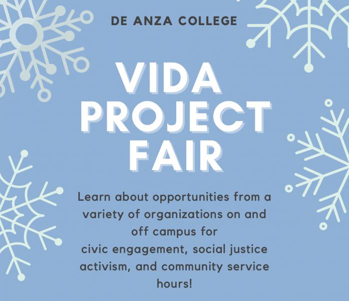 VIDA Project Fair